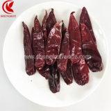 Xingjiang Pods de páprica e alta qualidade com/sem caule