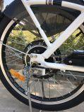 Bici elettrica di qualità della lunga autonomia di potere Premium del litio