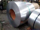 Aço laminado 0.13mm-3mm Coil/CRC de DC01 SPCC