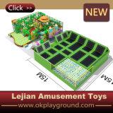 Trampoline de van uitstekende kwaliteit van het Bed van het Pretpark (b1501-5)