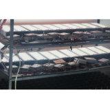 En el exterior de pared LED de alta calidad de luz Pack con homologación UL CONDUCTOR
