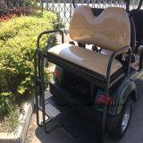 Vitesse rapide 6 passagers parcours de golf électrique RSE-2069F