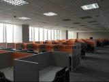Cas réussi dans le poste de travail de compartiment de centre d'appels de Philippines (FOH-WS32)