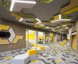 De hoogste Verlichting van het plafond van de Fabrikant voor het Ontwerp van het Bureau