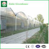 Hydroponic 시스템 냉각 장치 또는 난방 장치를 가진 다중 경간 필름 농업 온실
