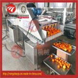 De parallelle Wasmachine van de Aardappel van de Rollen van de Borstel