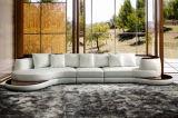 Canapé en cuir, canapé moderne, canapé en coupe