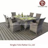 Steel Frame (1412年)の屋外のRattan Dining Set