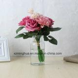 Vaso de vidro transparente da cor decorativa