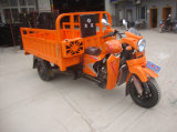 250cc Cina Motorcycle Motorized Tricycles per Adults