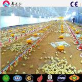 Camera di pollo con la tettoia prefabbricata materiale d'acciaio della griglia del pollame