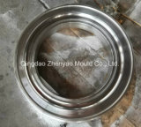 2.00-17 fornitore cinese della muffa del tubo dell'alloggiamento del vapore di alta qualità