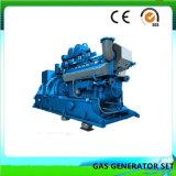 Limpe o conjunto do gerador de biomassa de energia (50KW)