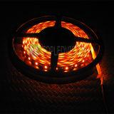 Luz de tira del ámbar los 240LEDs/M 23W LED de la alta calidad con el alto lumen SMD2835