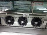 Chambre froide de la double température, demi de congélateur et demi de promenade de réfrigérateur dans le congélateur
