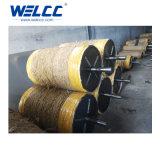 China, das Zylinder-Reinigungs-Rolle mit Qualität herstellt
