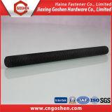 Acciaio legato ASTM A193 Rod filettato B16