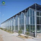 Низкая цена стекла сельского хозяйства оборудование для выбросов парниковых газов