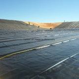 2mm HDPE/LDPE/EVA Geomembranes per il serbatoio di piscicoltura