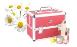 Trays를 가진 Makeup를 위한 다채로운 Aluminium Cosmetic Case