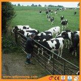 Gegalvaniseerd Metaal V de Landelijke Poort van het Landbouwbedrijf van het Verblijf