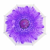 ذاتيّة [شبر] زهرة طباعة [بو] مظلة أرجوانيّة مستقيمة