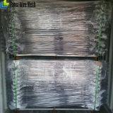 Panneau de clôture en acier d'enduit de poudre d'Akzo Nobel