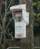 SoundおよびLight Alertの屋外の太陽Powered Spot Alarm PIR Detector