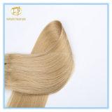 Bestes Qualitätsvolles Enden-Doppeltes gezeichnete Jungfrau-Haar-Extension Wfd-002