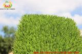 A grama verde para o telhado cobre lugares internos e ao ar livre do lazer