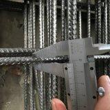 فولاذ شبكة لأنّ [كنكرت بويلدينغ] يعزّز شبكة