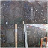 Floor&StairのためのStローレントの大理石を舗装するブラウンの灰色の大理石の平板