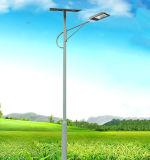 태양 가로등 폴란드를 위한 DC12V 24V 20W-200W 태양 빛