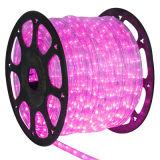 Farbe des LED-wachsen die helle Swimmingpool-Seil-Licht-12V, die LED-Seil ändert, Licht