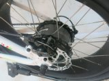 完全な中断20 '脂肪質のタイヤの電気バイク(FR TDN05Z脂肪質)