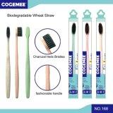 Brosse à dents adulte de paille biodégradable respectueuse de l'environnement de blé avec les brins 168 de charbon actif