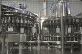 embotelladora de la bebida funcional de la botella del animal doméstico 2000-36000bph