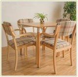 Muebles de madera para la sala de estar casera