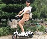 Nouveau mode 2 roues pédales Scooter électrique pliant assistée Bike