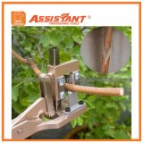 せん断を切り取るアルミ合金の果樹は切削工具の接木を切る