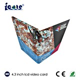 Vente chaude brochure visuelle de salutation d'écran LCD de 4.3 pouces