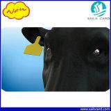 Einteilige Rind-Leerzeichen-Ohr-Marken für Vieh-Kuh Bulf