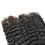 깊은 브라질 머리 컬은 머리 3개 피스 100% 사람의 모발 Remy 비 묶는다