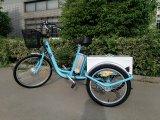 China-neuer Preis-grosses Fahrzeug- mit drei Rädernelektrisches Dreirad für Behinderte