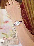 Ladies Fashion Watches, Dress Wristwatch, Vouge Watch (DC-282)