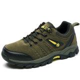Оптовые дешевые водоустойчивые Hiking люди ботинок