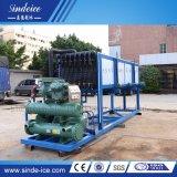 Fabbricazione automatica del ghiaccio in pani da 5 tonnellate/macchine del creatore con Ce/ISO9001 1t-30t approvato disponibile