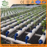 Système hydroponique vertical de PVC Aeroponic Nft de Hidroponia de ferme