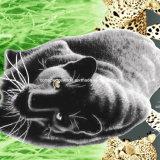 100%Polyester Miao 3D Zerstreung druckte Gewebe für Bettwäsche-Set