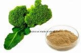 ブロッコリーの野菜粉Sulforaphane 0.5%の1% 2% 10% 98%/ブロッコリーのエキス